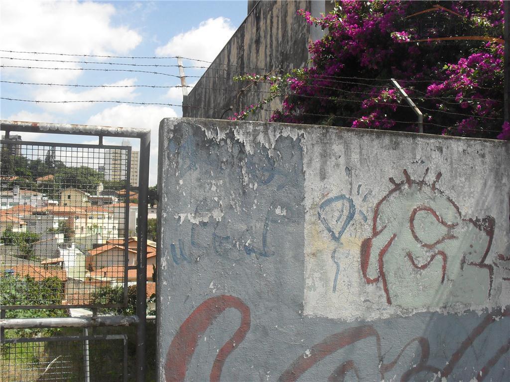 Terreno  residencial à venda, Alto da Lapa, São Paulo.