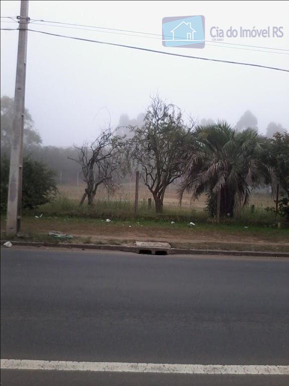 Terreno comercial à venda, Jardim Lindóia, Porto Alegre - TE0140.