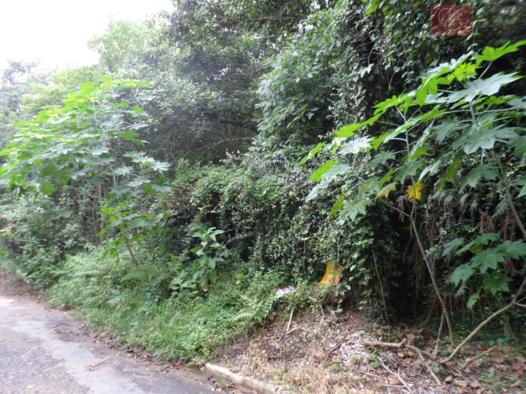 Terreno  residencial à venda, Fazendinha, Carapicuíba.