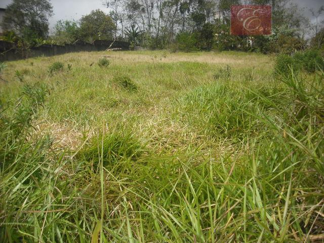 Terreno residencial à venda, Recanto Verde, Carapicuíba - TE0033.