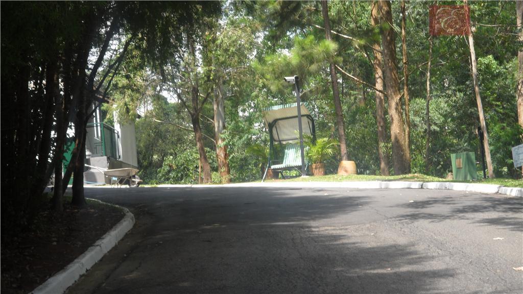 Terreno residencial à venda, Jardim das Paineiras, Cotia - TE0728.