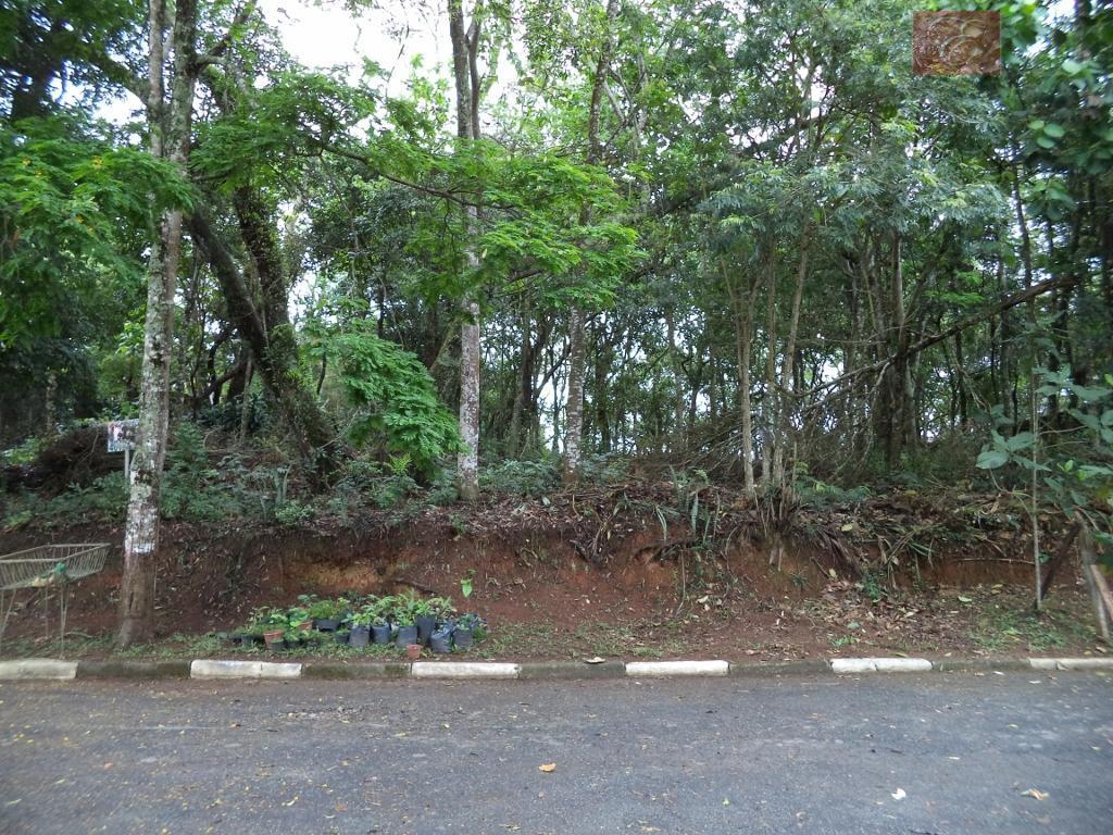Terreno residencial à venda, Parque Dom Henrique, Cotia - TE0675.