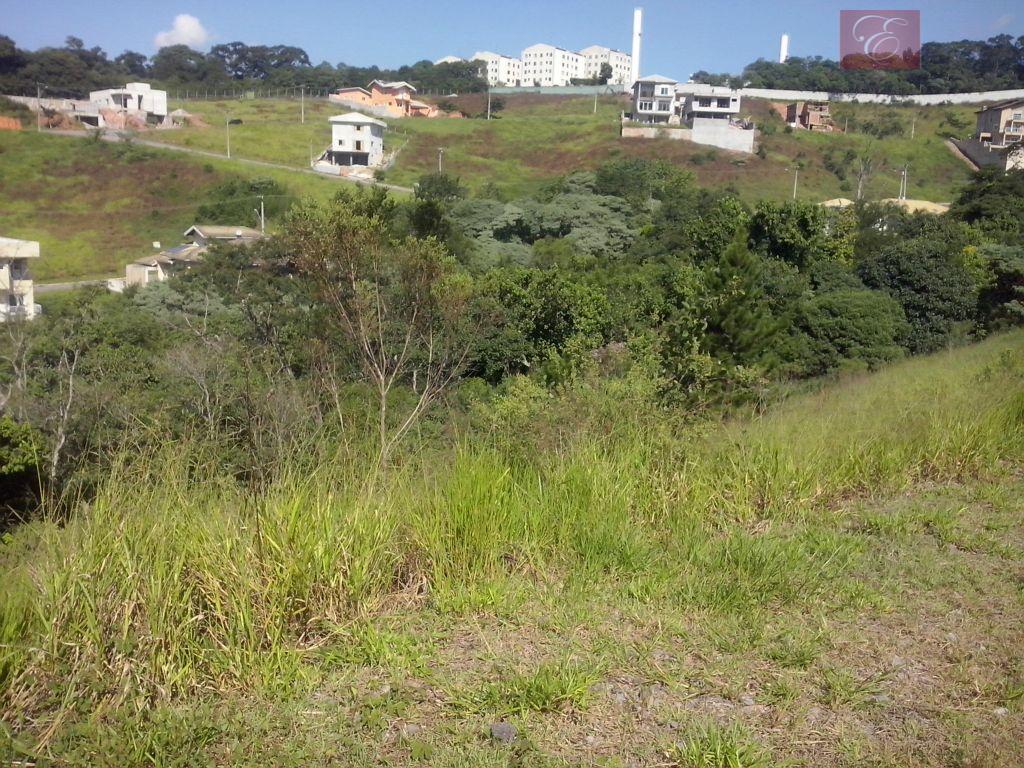 Terreno residencial à venda, Reserva Vale Verde, Cotia - TE0349.