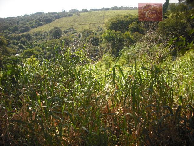 Terreno residencial à venda, Granja Viana II Gleba 1 e 2, Cotia - TE0735.
