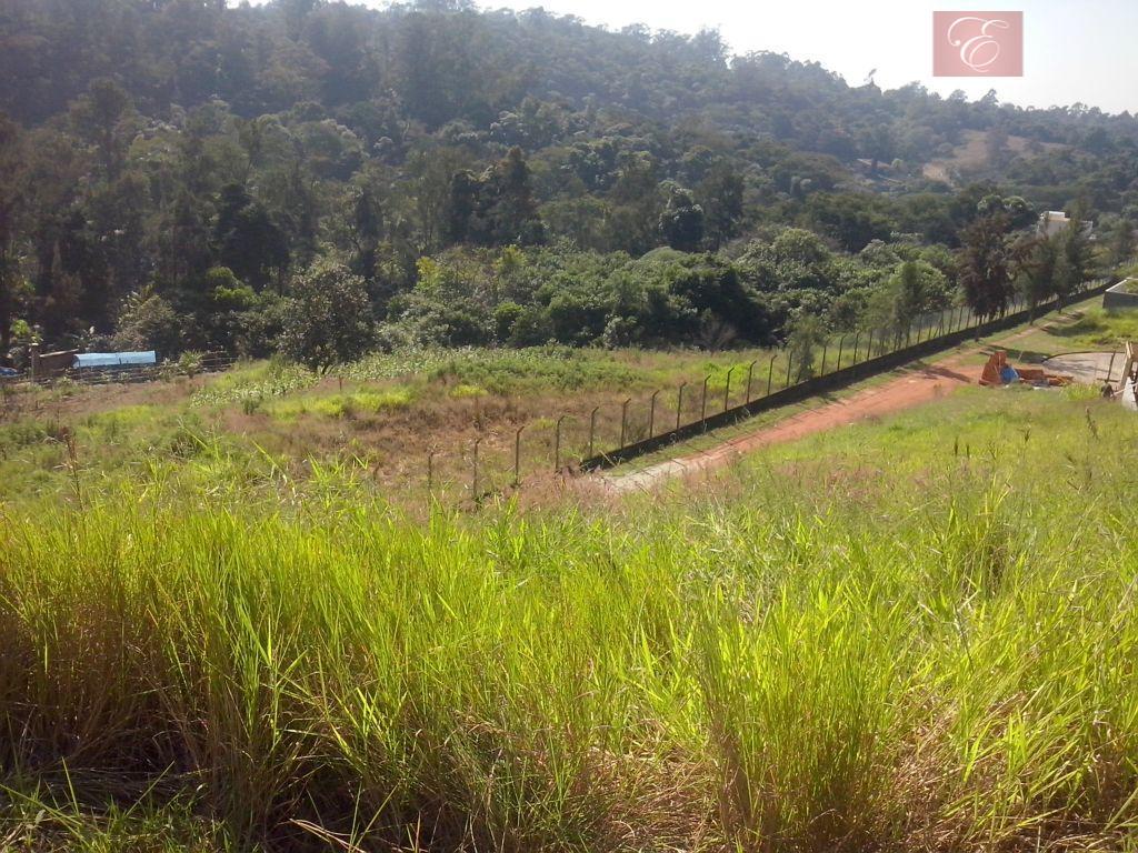 Terreno residencial à venda, Reserva Vale Verde, Cotia - TE0389.