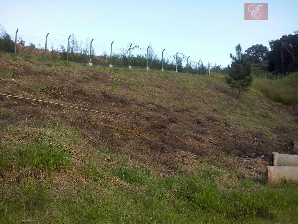 Terreno residencial à venda, Reserva Vale Verde, Cotia - TE0815.