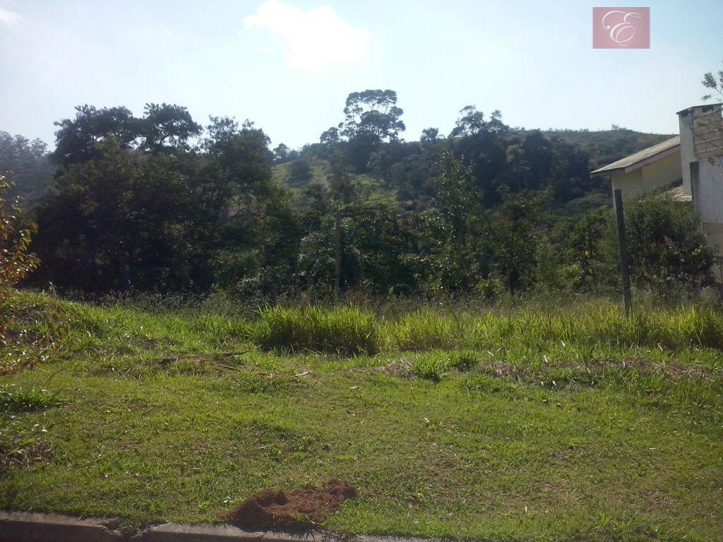 Terreno residencial à venda, Reserva Vale Verde, Cotia - TE0374.