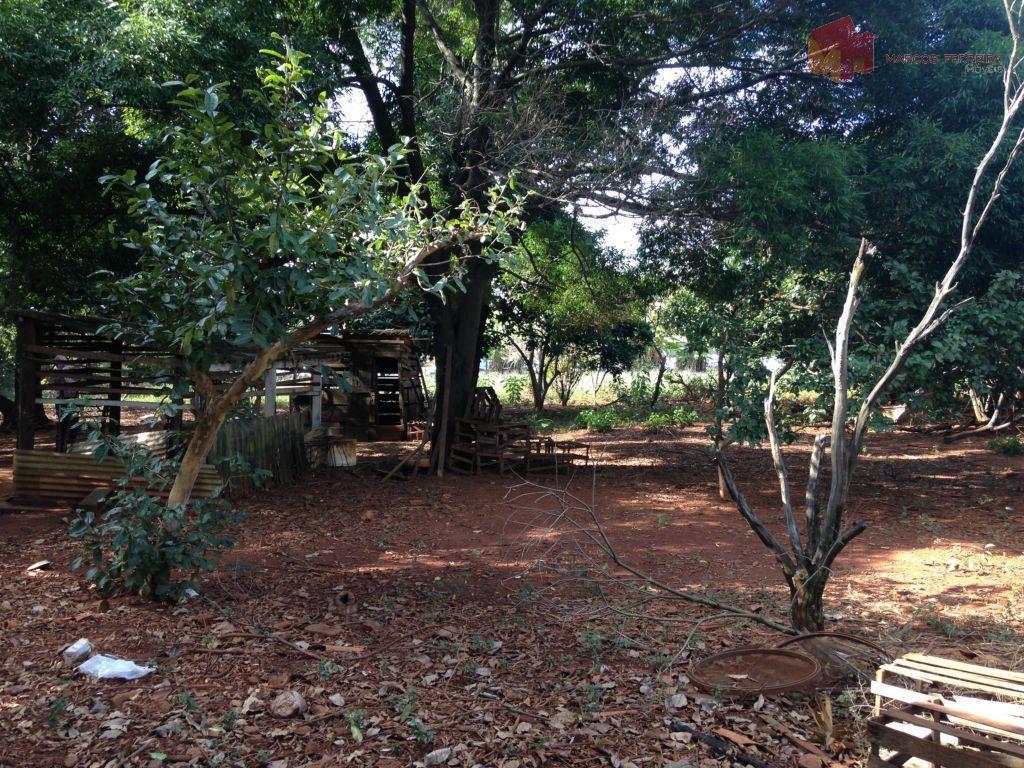 Terreno  residencial à venda, Vila Biasi, Americana.