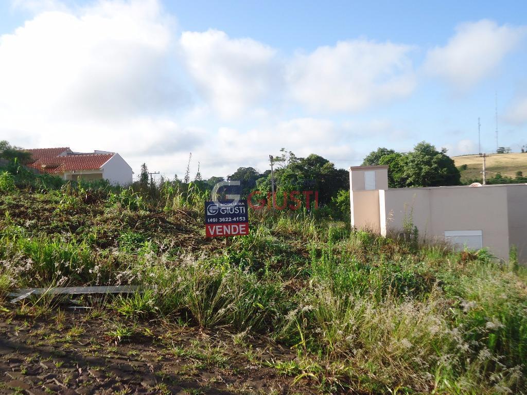 Terreno residencial à venda, Loteamento Celeste I, Bairro Agostini, São Miguel do Oeste.