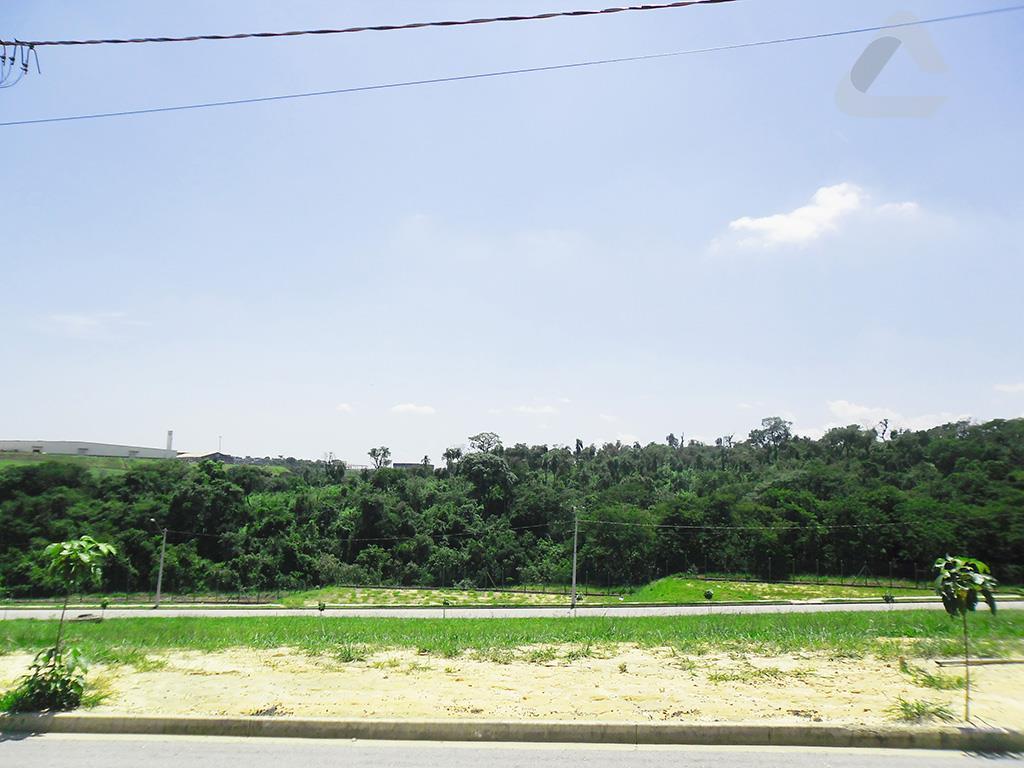 Ibiti Reserva