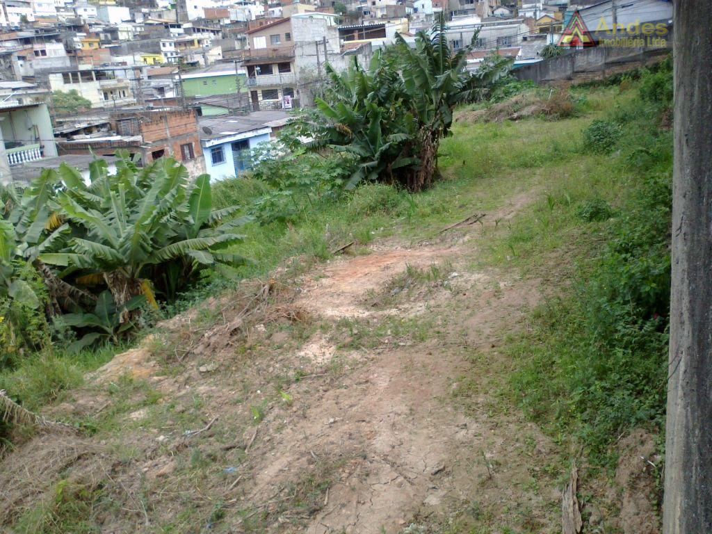 Terreno comercial para locação, Imirim, São Paulo.