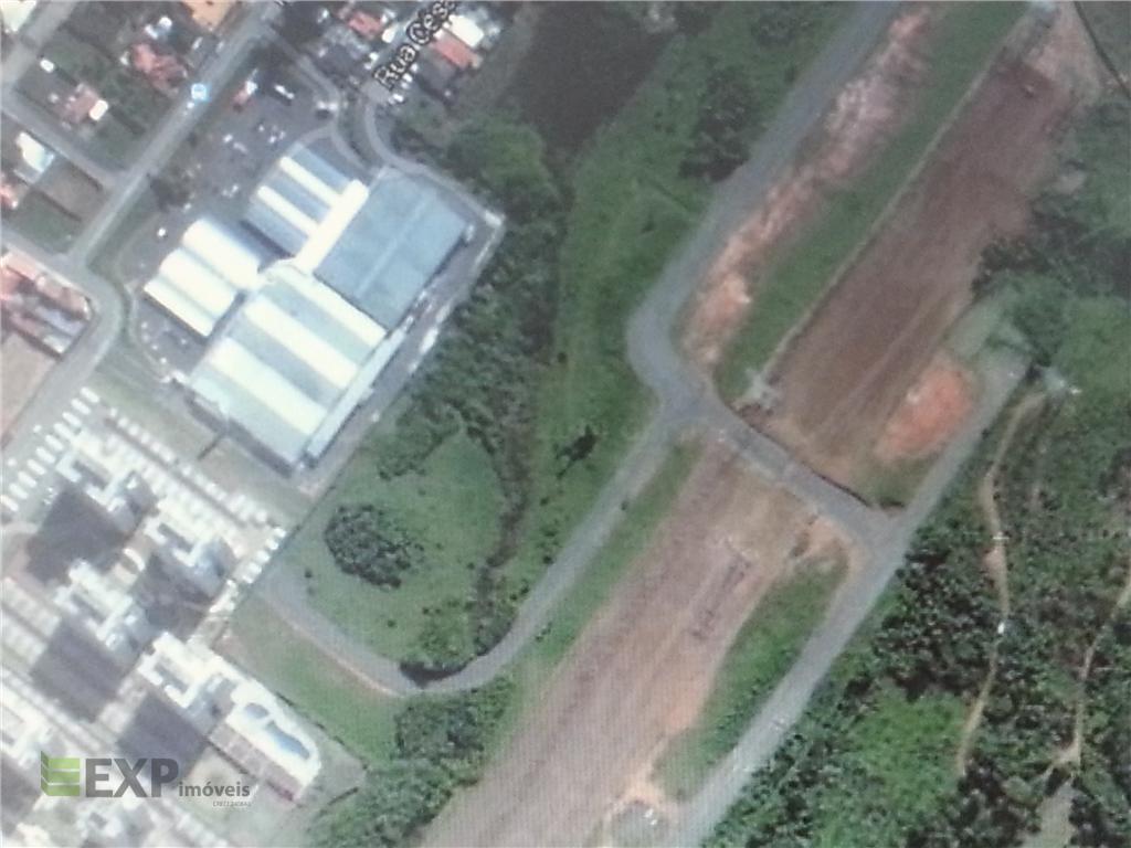 Terreno residencial à venda, Vila Oliveira, Mogi das Cruzes.