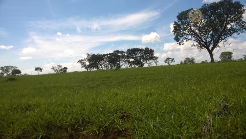 Fazenda rural à venda, Centro, São Gonçalo do Sapucaí - FA0030.