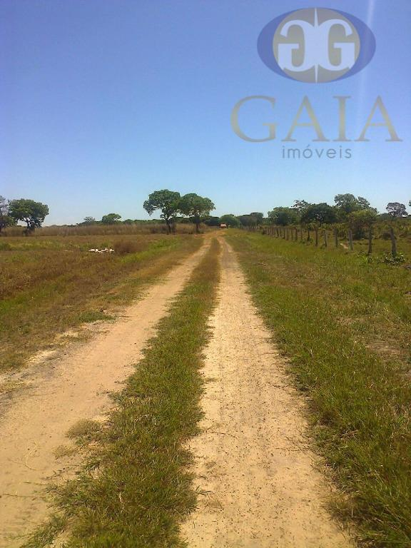 Fazenda rural à venda, Lagoa da  Confusão TO.