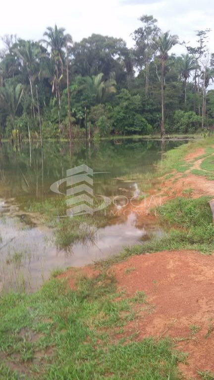 Fazenda - Joana Darc - Candeias do Jamari