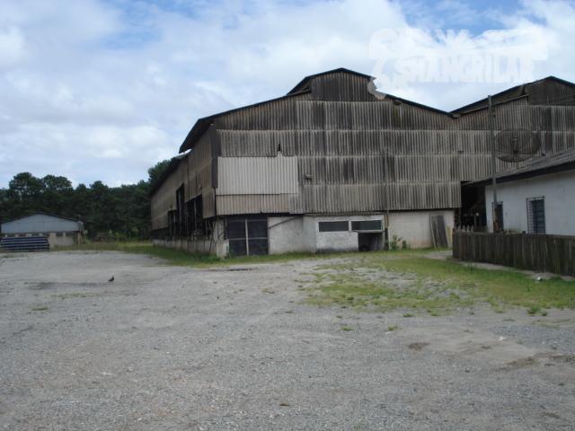área industrial, zup-1, c/84.141,50 m2. possuí galpões e casa no terreno. o mesmo tem partes planas,...
