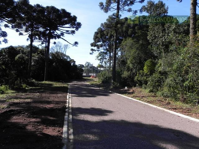 Terreno residencial à venda, Orleans, Curitiba - TE0233.
