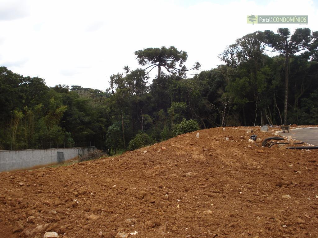 Terreno residencial à venda, Campo Comprido, Curitiba - TE0480.