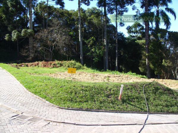 Terreno residencial à venda, Campo Comprido, Curitiba - TE0196.