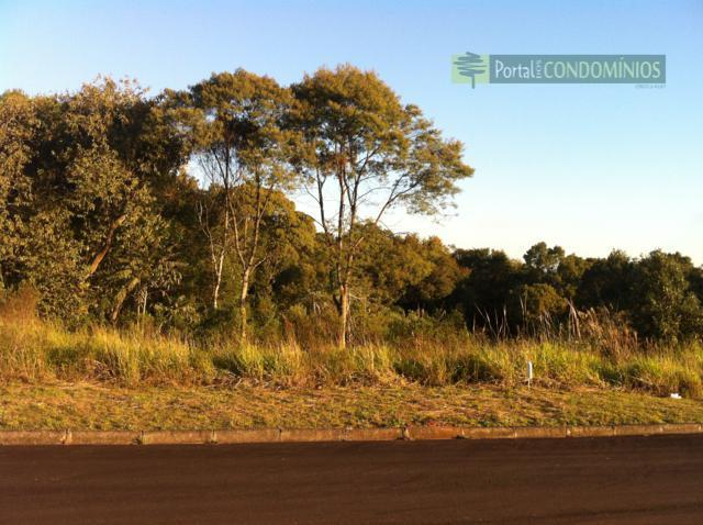 Terreno residencial à venda, Centro, Quatro Barras - TE0038.