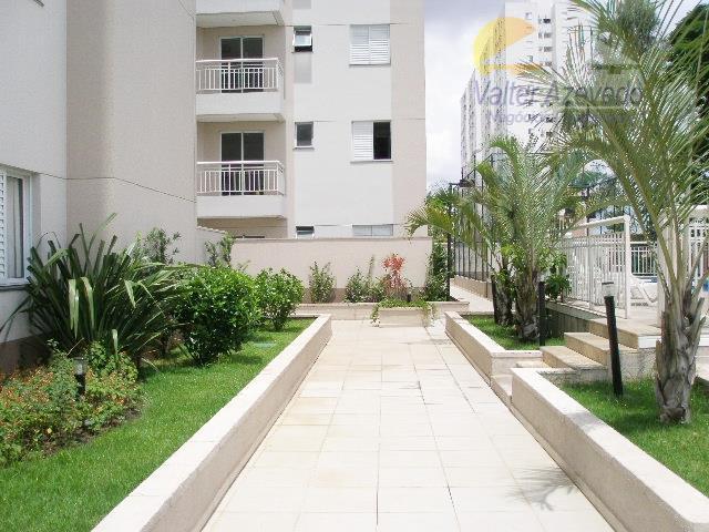 Apartamento residencial para locação, Vila Amália (Zona Norte), São Paulo - AP0396.