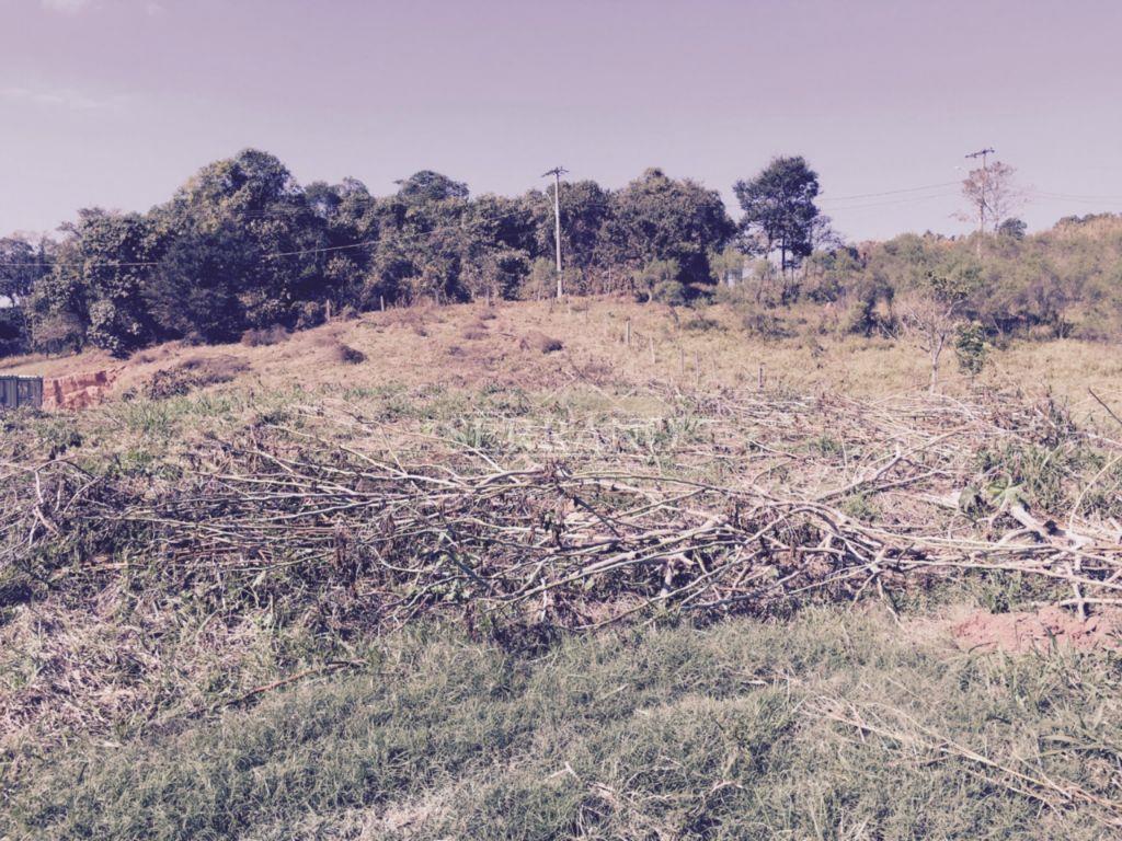 Terreno com leve declive, para venda, no bairro Pinheirinho, Vinhedo.