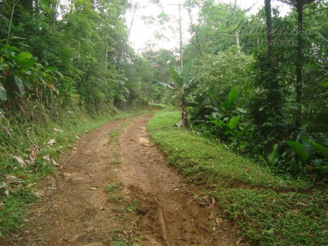òtimo terreno com 2.350 m² localizado na Colônia Marques Morretes.