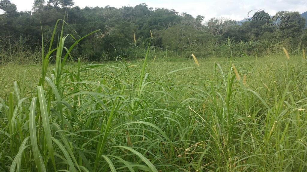 ótimo terreno medindo 13.961,21 m² no rio sagrado em morretes/pr. o terreno faz fundos com o...