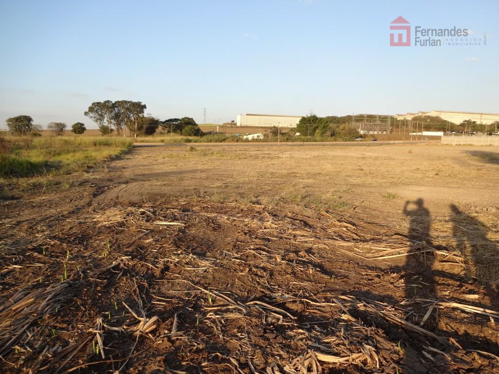 belíssima área plana com 50 m de frente para pista - excelente para loteamento, comercial e...