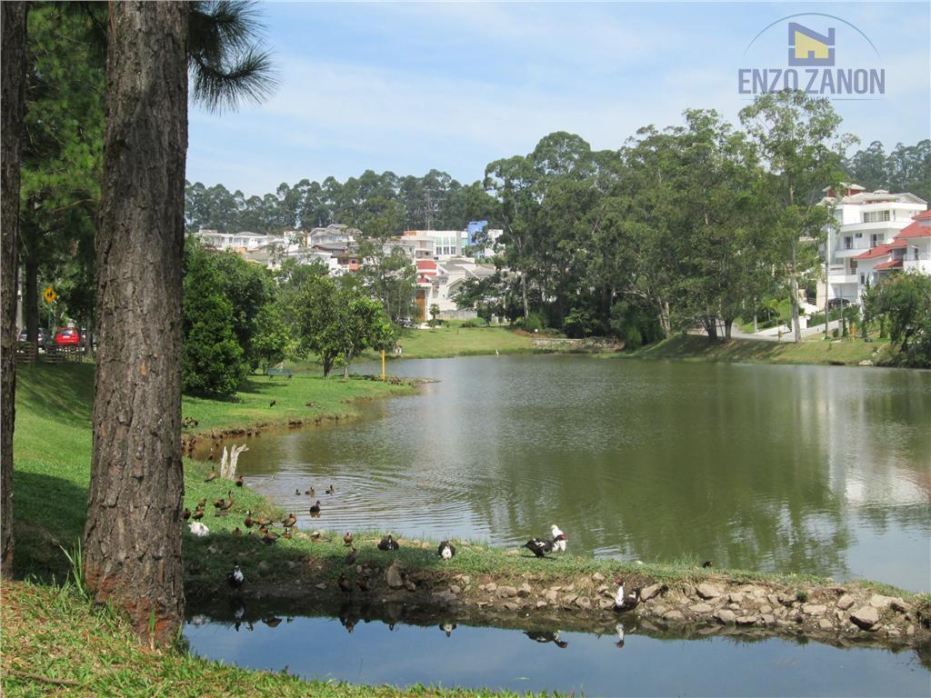 Terreno  residencial à venda, Swiss Park, São Bernardo do Campo.