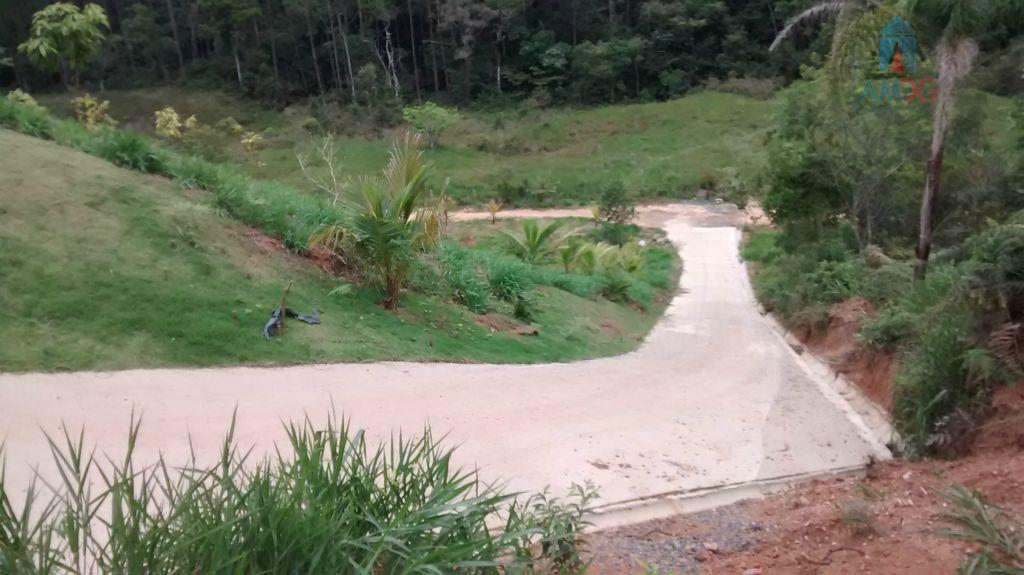 Terreno residencial à venda, Canhanduba, Itajaí - TE0100.