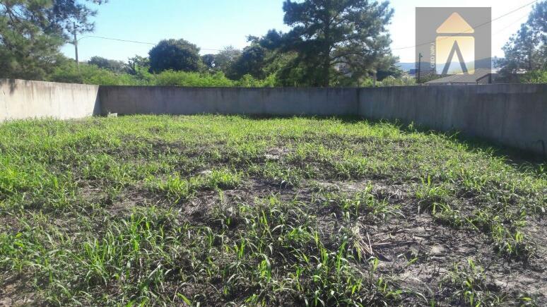Terreno residencial à venda, Canto Grande, Bombinhas - TE0233.