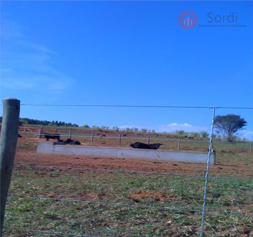 Fazenda rural à venda, Centro, Areado.