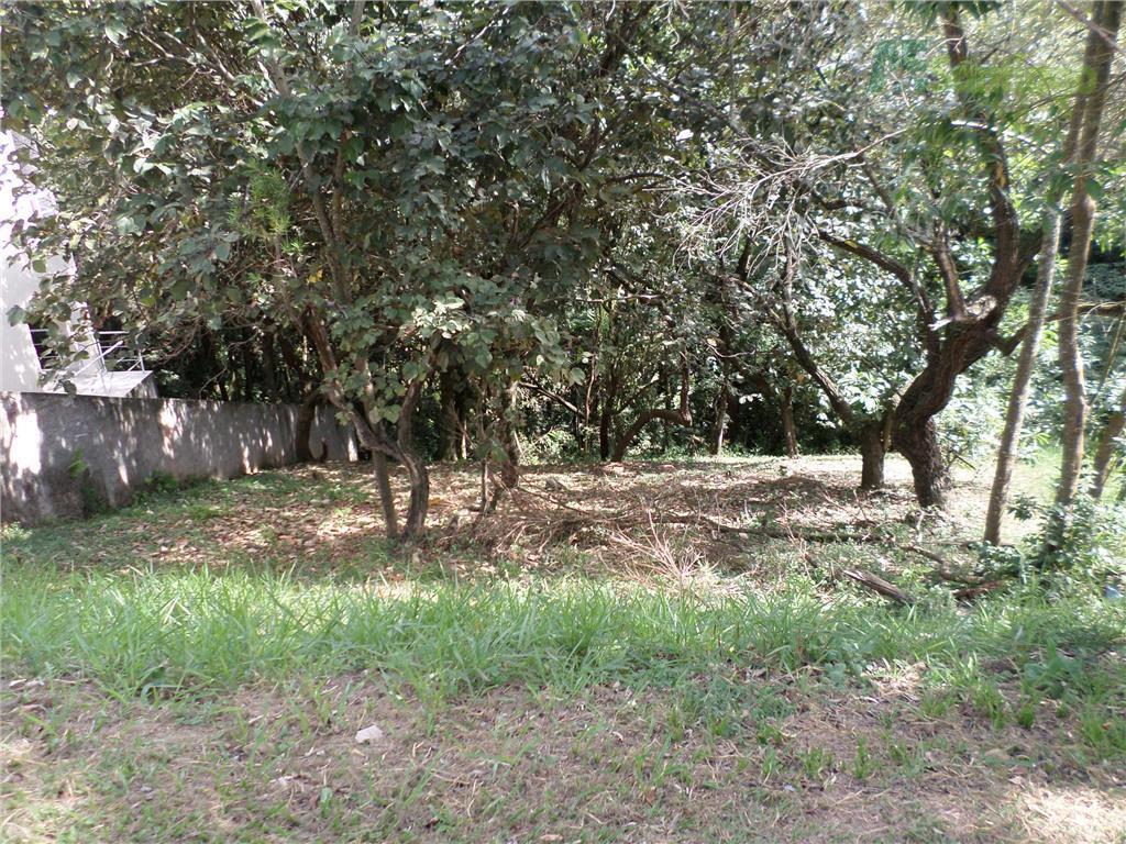 Terreno residencial à venda, Tarumã, Santana de Parnaíba - TE0101.