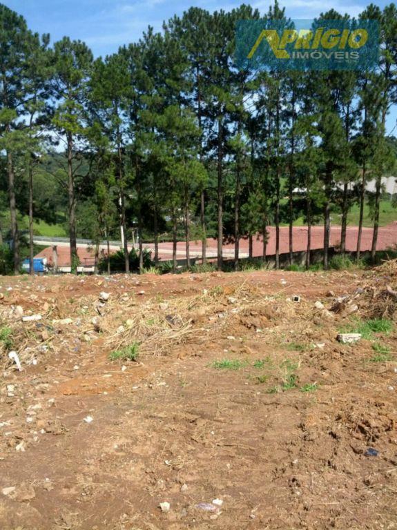Terreno industrial para locação, Parque Santa Amélia, Itapecerica da Serra - TE0002.