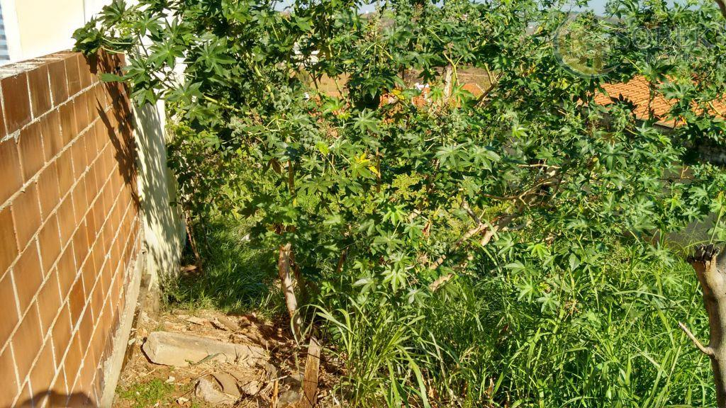 Terreno residencial à venda, Jardim Anton Von Zuben, Campinas - TE0053.