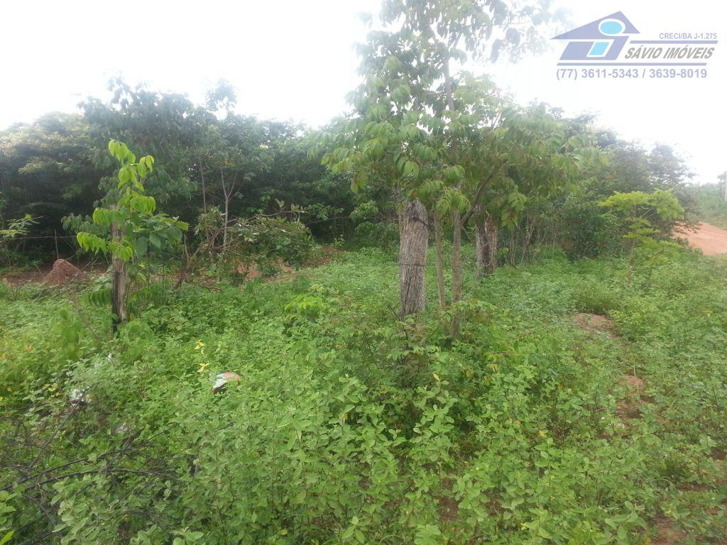 Terreno  residencial à venda, Buritis II, Barreiras.