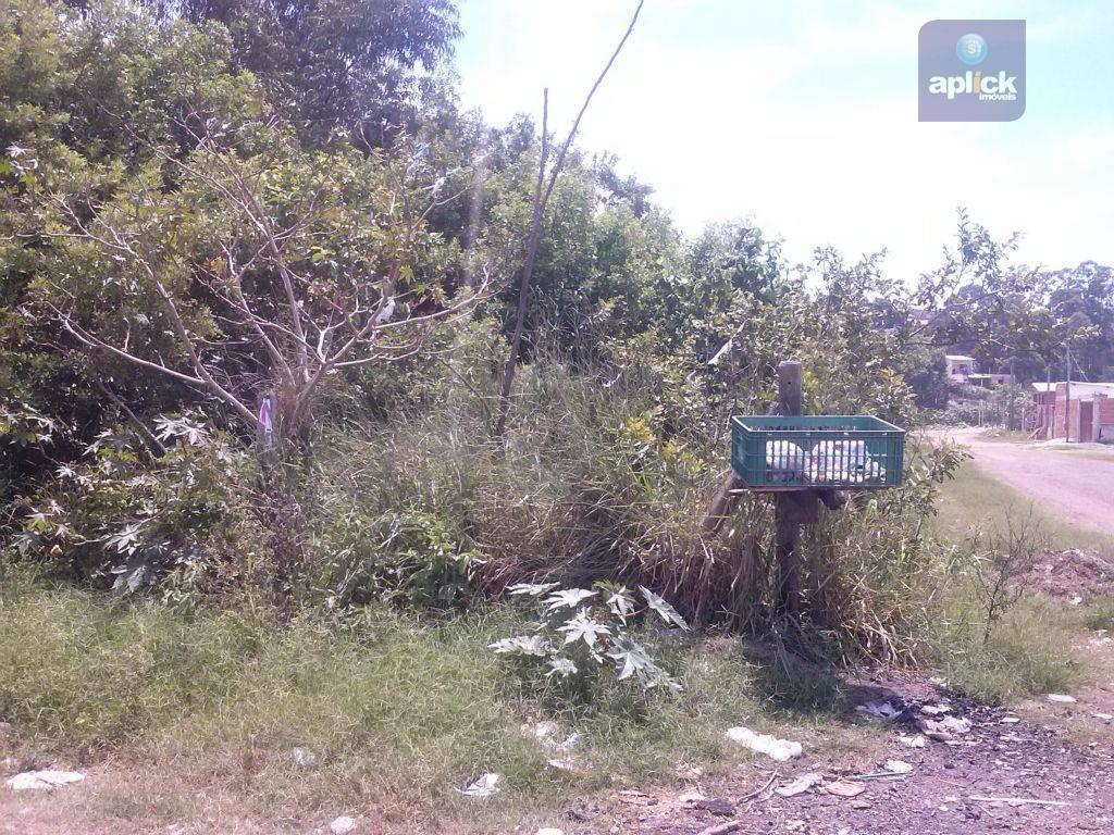 Terreno  residencial à venda, Jacaraípe, Serra.