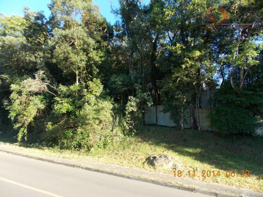 Terreno residencial à venda, Cascatinha, Curitiba.