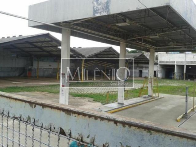 Terreno em Cidade Ademar, São Paulo - SP