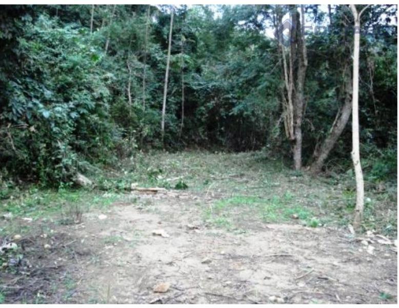 terreno na posse = 15.000 m² sendo 2.100 m² aproveitáveis. 04 platôs, rampa de acesso já...