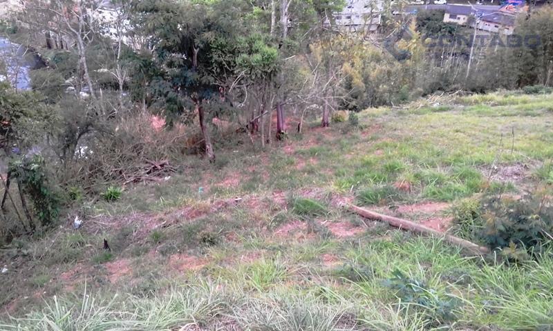 terreno com 600 m². com leve aclive. minutos do centro do bairro tendo acesso também pela...