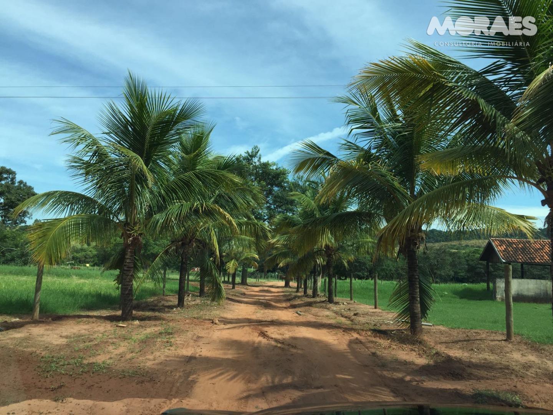 Haras à venda, Zona Rural, Bauru.