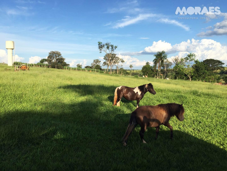 Chácara à venda, Zona Rural, Piratininga.
