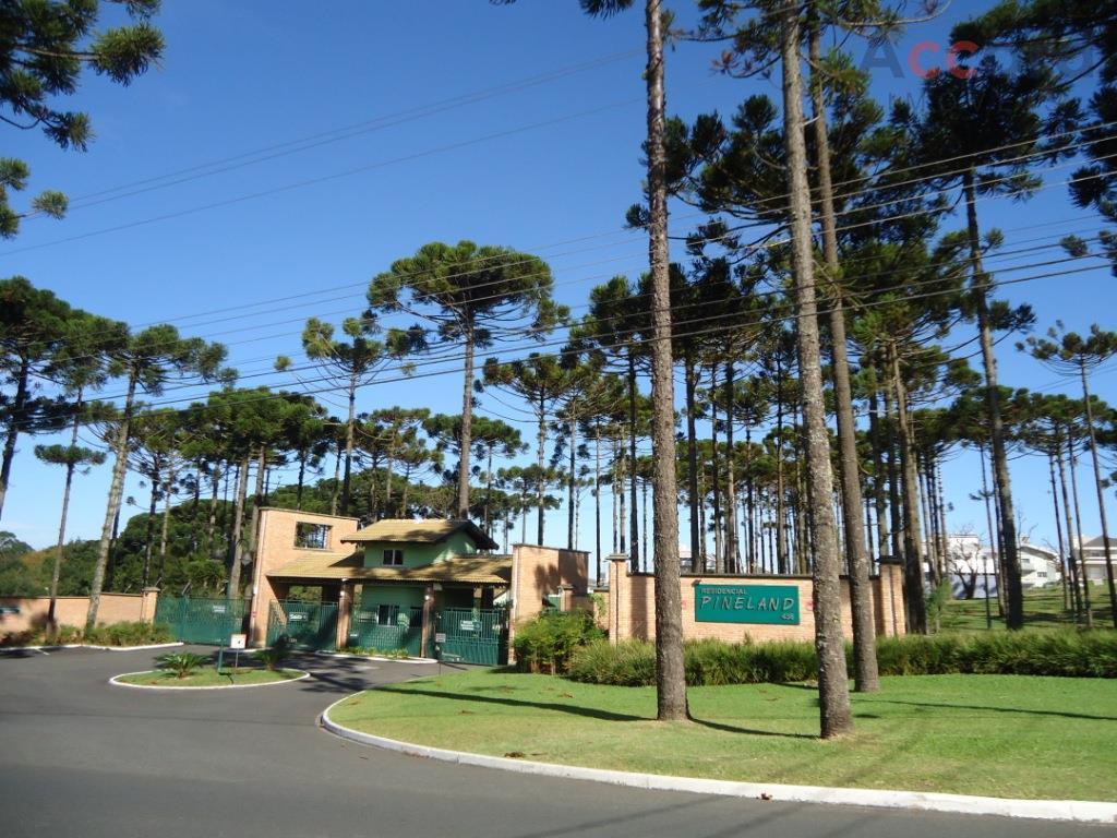Terreno residencial à venda, Loteamento Pineville, Pinhais.