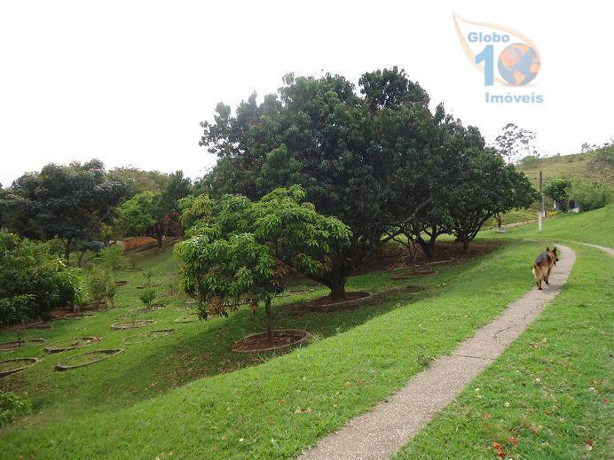 Total Imóveis - Terreno, Aparecidinha, Sorocaba - Foto 5