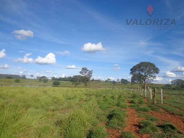 Fazenda  rural à venda, Quirinópolis.