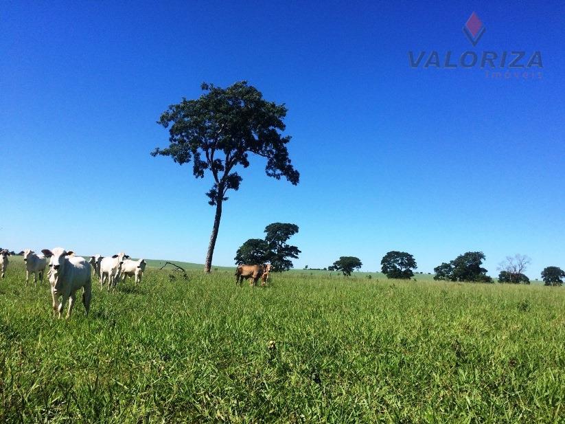 Fazenda à venda, Zona Rural, Quirinópolis.