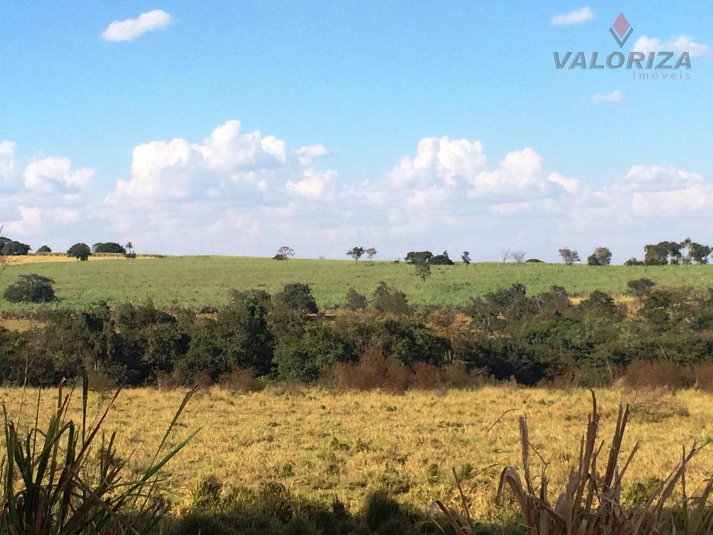 Sítio 07 Alqueires, Zona Rural, Quirinópolis.