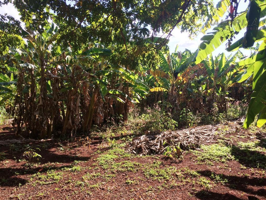 07 alqueires (33,88 hectares), região do castelo, 28km de quirinópolis, 1,5km do asfalto, casa, curral, energia,...